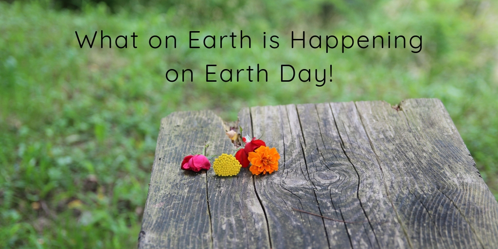 Earth Day is a wonderful annual celebration for environmental protection in the United States and all across the globe. Learn what is happening here in Tulsa for Earth Day and find ways to get involved!