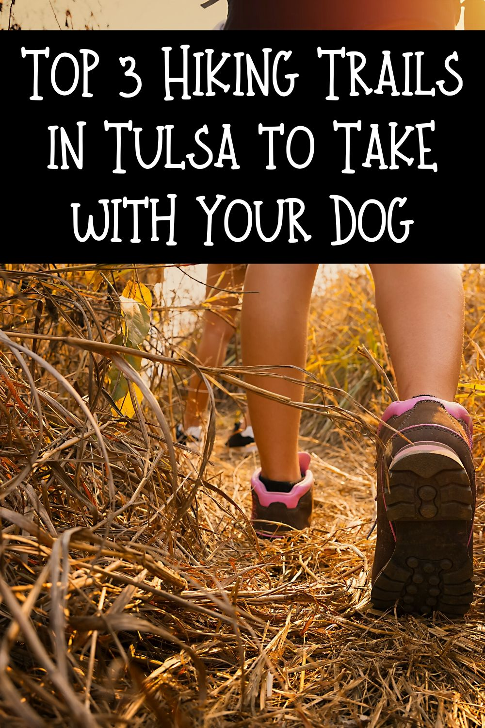 If you are a fan of Tulsa hikes and pets this is the blog for you! Check out these top 3 Tulsa hikes that you can take with your dog! Hiking with your dog is fun, it's great exercise for you both, and it's beautiful since we have some gorgeous scenery here in Tulsa.